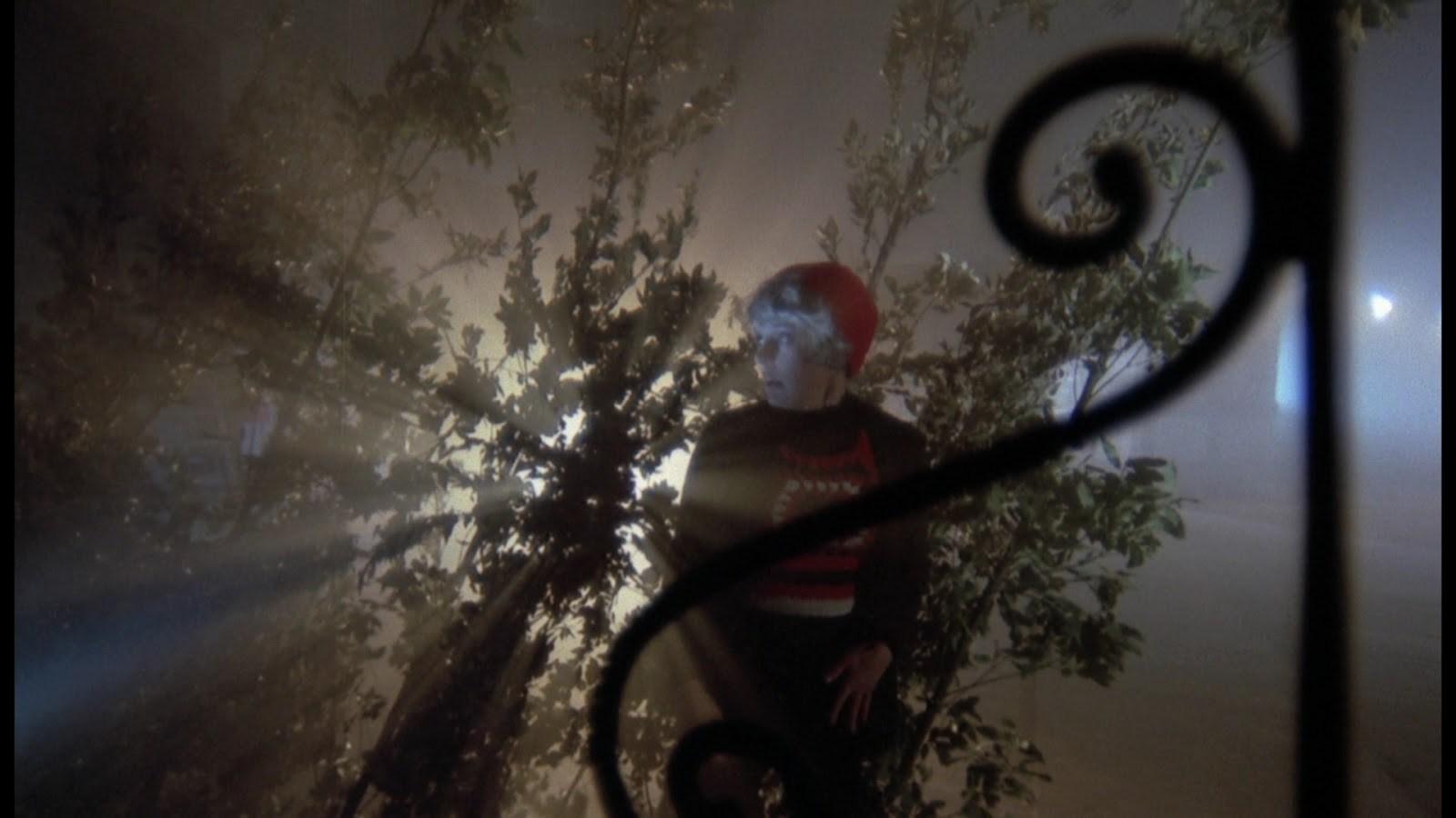 Baron-Blood-Cinematography3