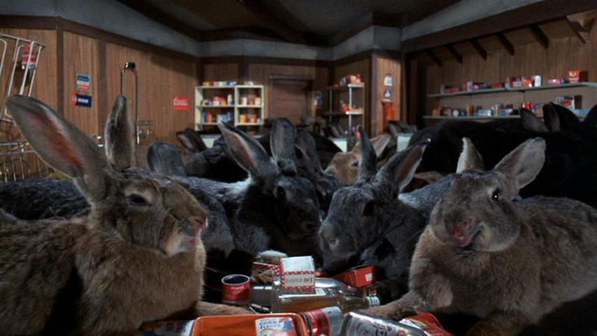 night-of-the-lepus-2