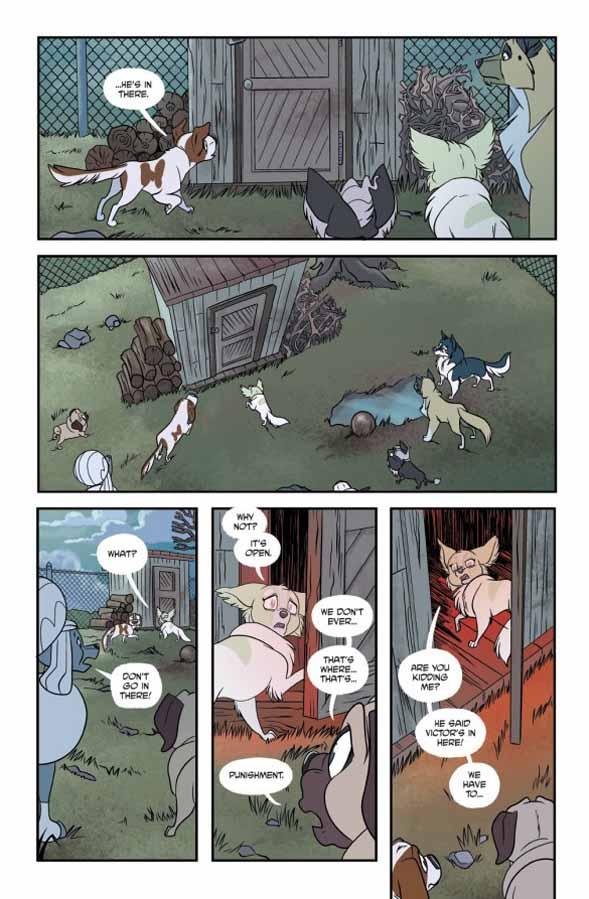 straydogs41