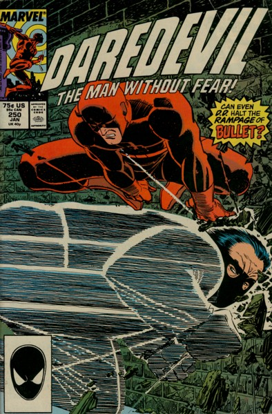 daredevil-comics-250-issues-v1-1964-1998-33928