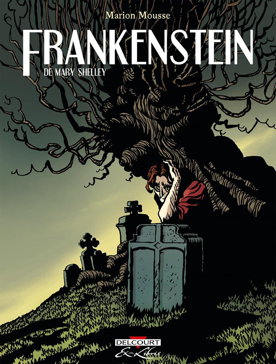 frankenstein-Integrale